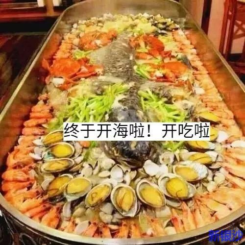 正式开海啦!今日休渔期正式结束,湛江要开海啦