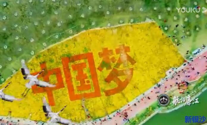 向廉江红橙节献礼,燃视频 --《航拍廉江》第一季上线..