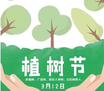 今天植树节!让我们共同守护绿色家园